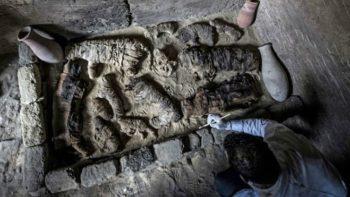 Егіпецкія археолагі паказалі муміі котак і жукоў-скарабеяў