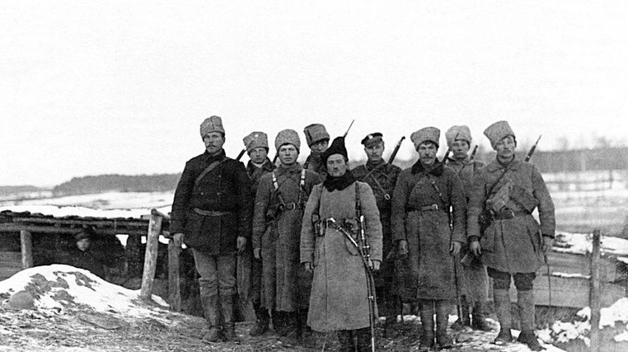 Палякі пра беларускі антыбальшавіцкі рух 1920-х
